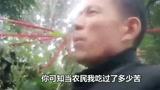 王银辉豫剧《农民难》一年四季不得闲