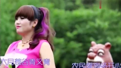 贵州山歌:六月苞谷出天花
