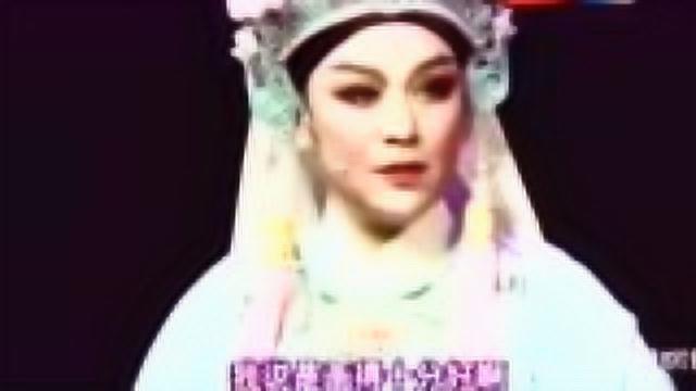 越剧《孟丽君·探病》王志萍 黄慧