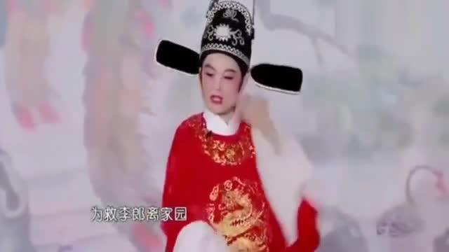 """黄梅戏《女驸马》精彩唱段""""为救李郎离家园""""!"""